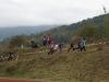 2011_crosslauf32